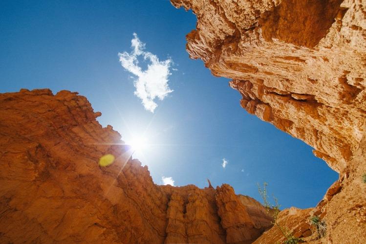 Vitamin D - aus der Sonne oder als Tablette