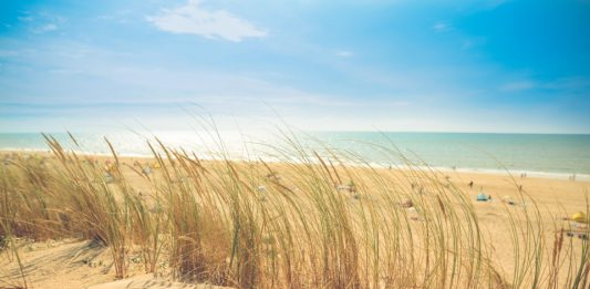 Öko Sonnenschutz - die Haut sagt Danke!